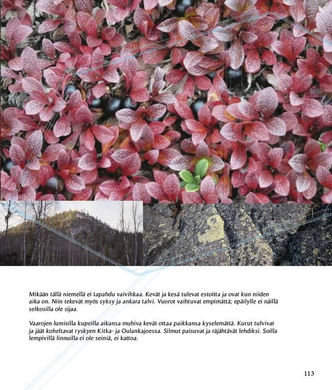 https://www.kitkajoki.fi/wordpress/wp-content/uploads/2017/10/Puhdasluonto-puhdasvesi-2017-10-113.jpg