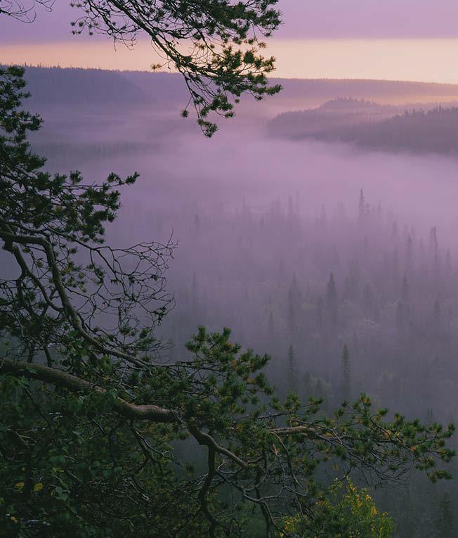 https://www.kitkajoki.fi/wordpress/wp-content/uploads/2017/10/Puhdasluonto-puhdasvesi-2017-10-151.jpg