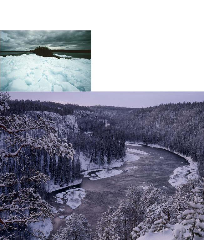 https://www.kitkajoki.fi/wordpress/wp-content/uploads/2017/10/Puhdasluonto-puhdasvesi-2017-10-157.jpg
