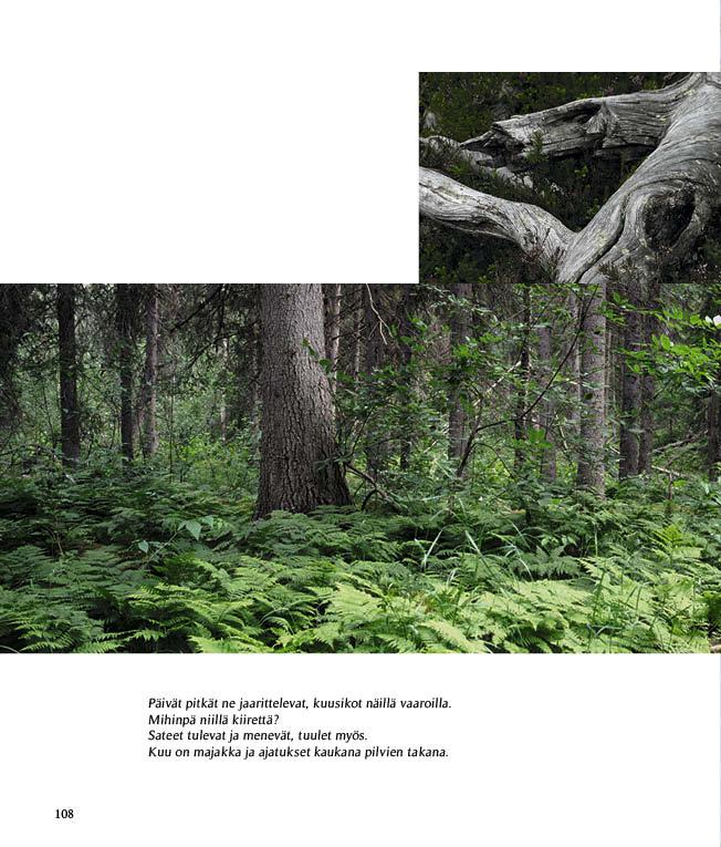https://www.kitkajoki.fi/wordpress/wp-content/uploads/2017/11/Puhdas-vesi-Kitkajoki-Kitkajarvi108.jpg