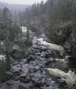 https://www.kitkajoki.fi/wordpress/wp-content/uploads/2017/11/Puhdas-vesi-Kitkajoki-Kitkajarvi116-256x300.jpg